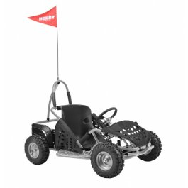 HECHT54814 Buggy